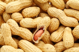 Peanut-allergic Soy-allergic & Asthma Inhalers