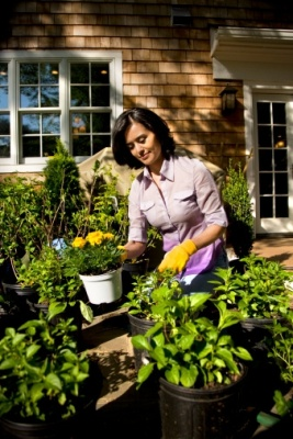 Allergy-Friendly Gardening